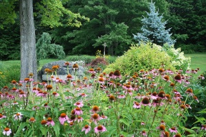 Friendship Garden Summer1